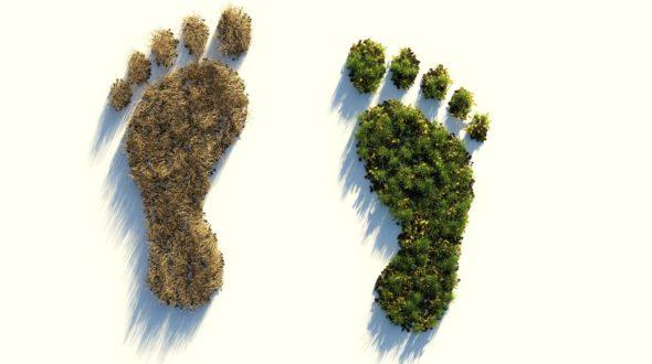 Mein persönlicher ökologischer Fußabdruck